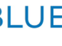 BlueDog Online Loan Reviews